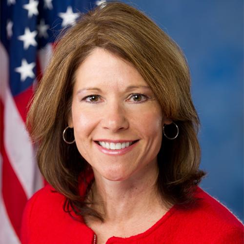 Representative Cheri Bustos Illinois' 17th Congressional District